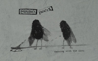 emergency_flies