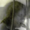 Edith Lettner