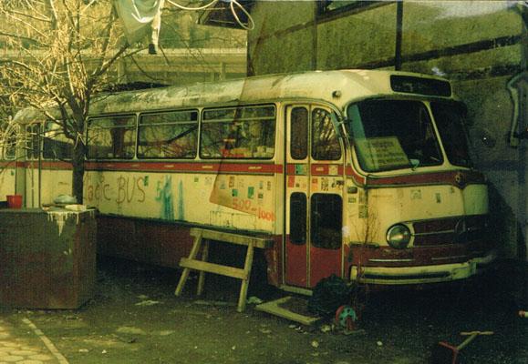 haven - magicbus