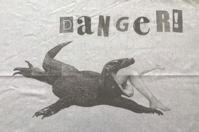 danger_flo