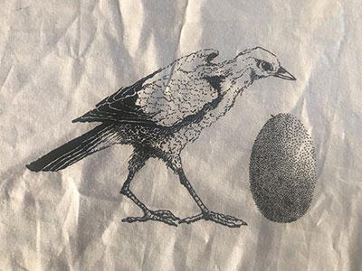 vogelschwangerschaft