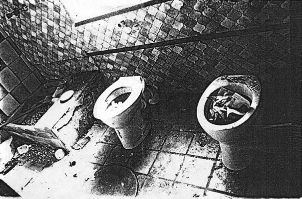 haven toilette